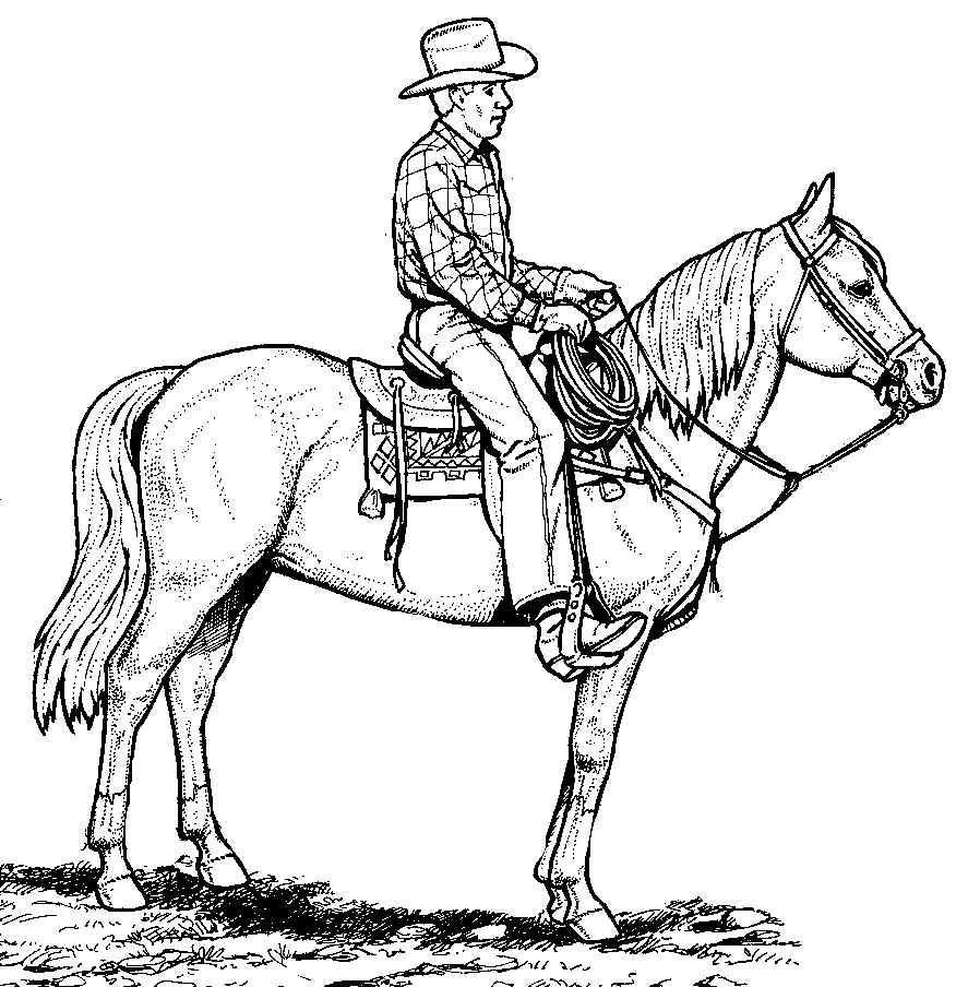 It is an image of Superb Horse Coloring Pages Realistic