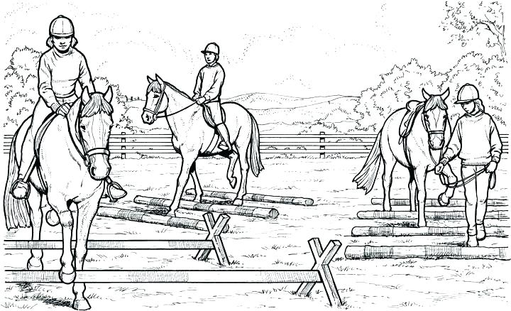 Saddlebred horse coloring pages | 438x720