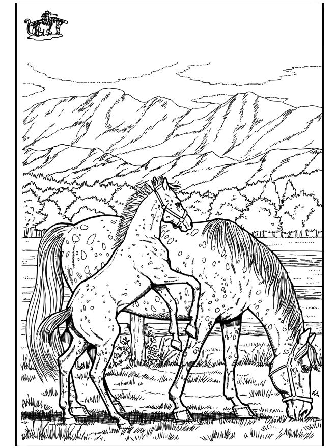 Horses coloring pages | Free Coloring Pages | 880x660