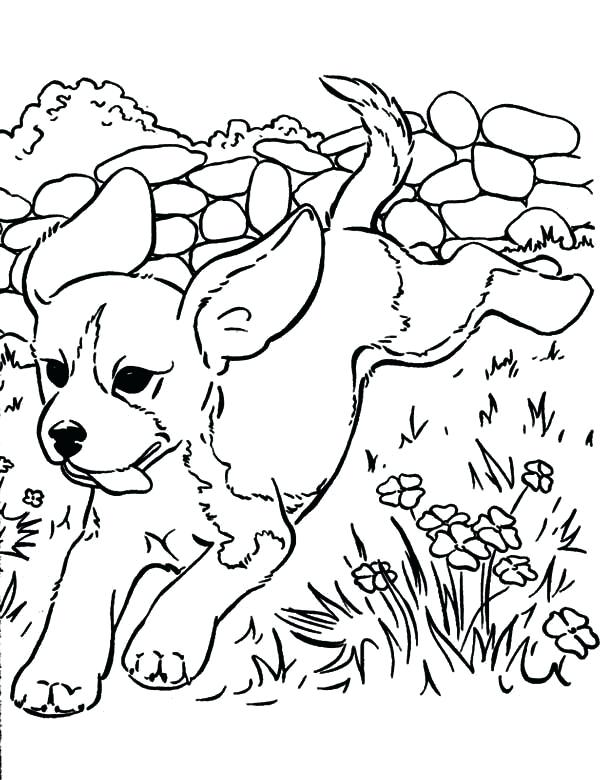 Running Dog Coloring Pages