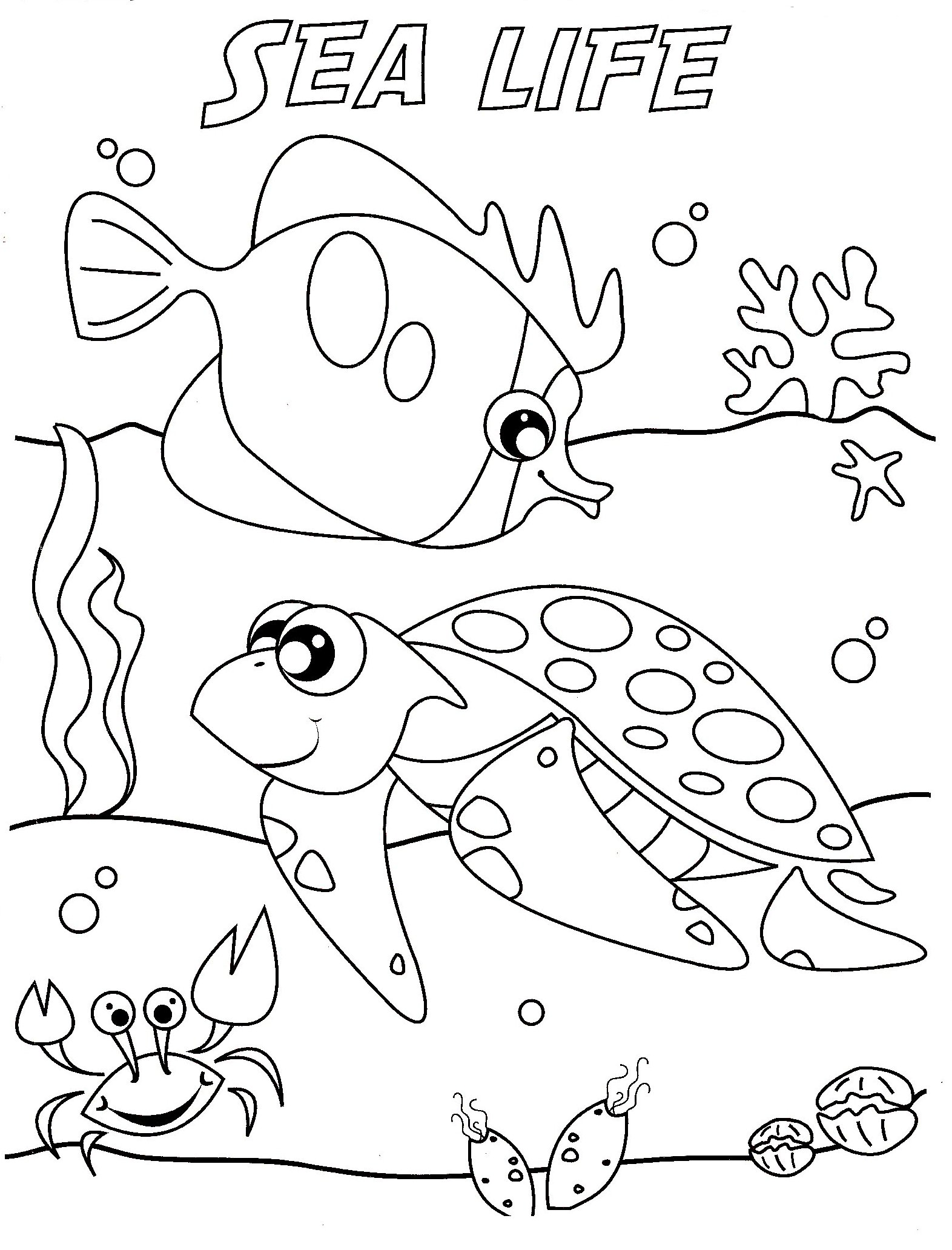 Sea Life Coloring Pages – coloring.rocks!