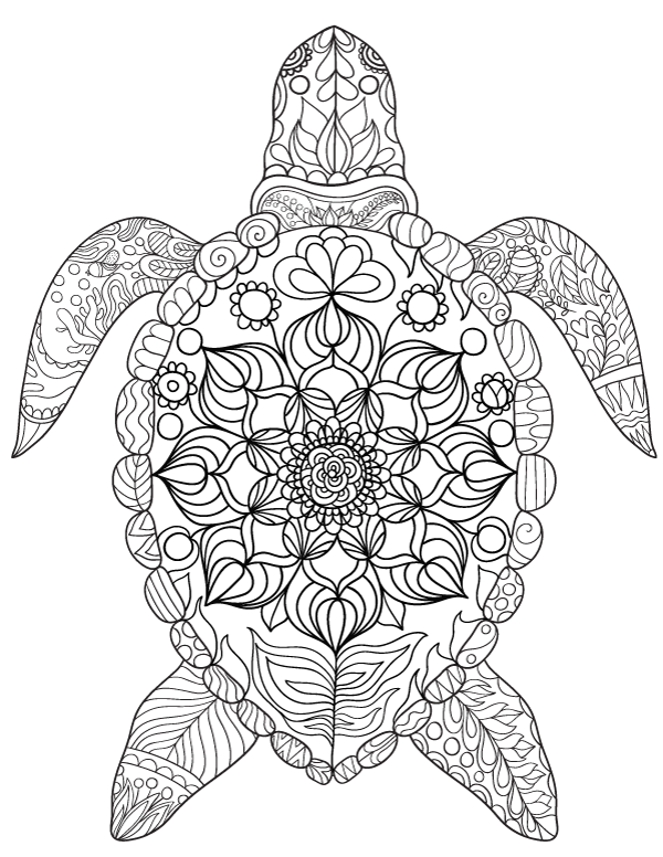 Realistic Turtle Coloring Pages
