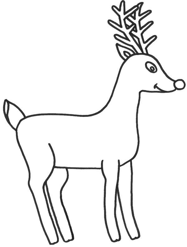 9 Free Printable Deer Coloring Pages For Kids 2016 | 794x600