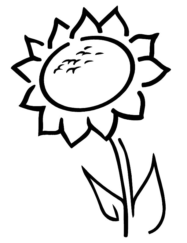Simple Sunflower Coloring Page for Preschoolers