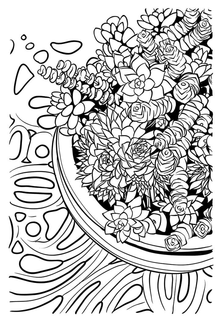 Succulent Bowl Coloring Pages