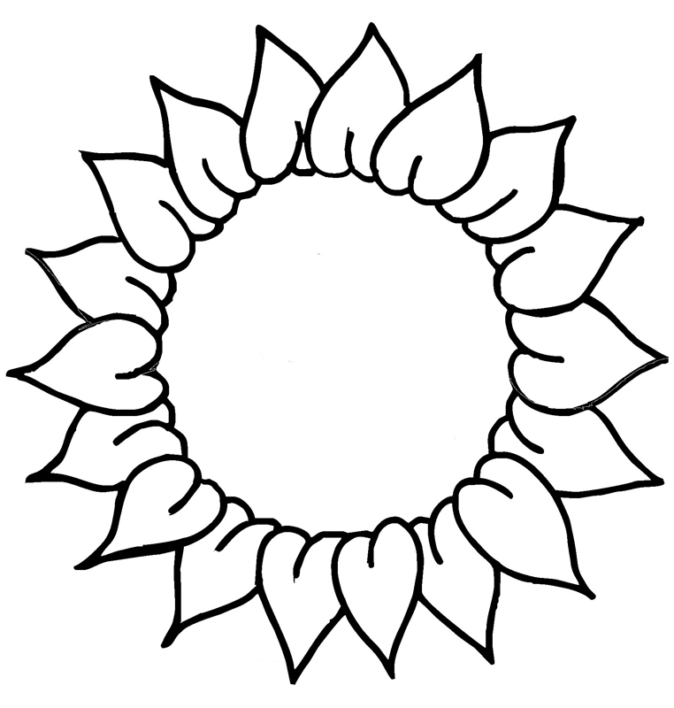 Sunflower Head Coloring Page for Preschoolers
