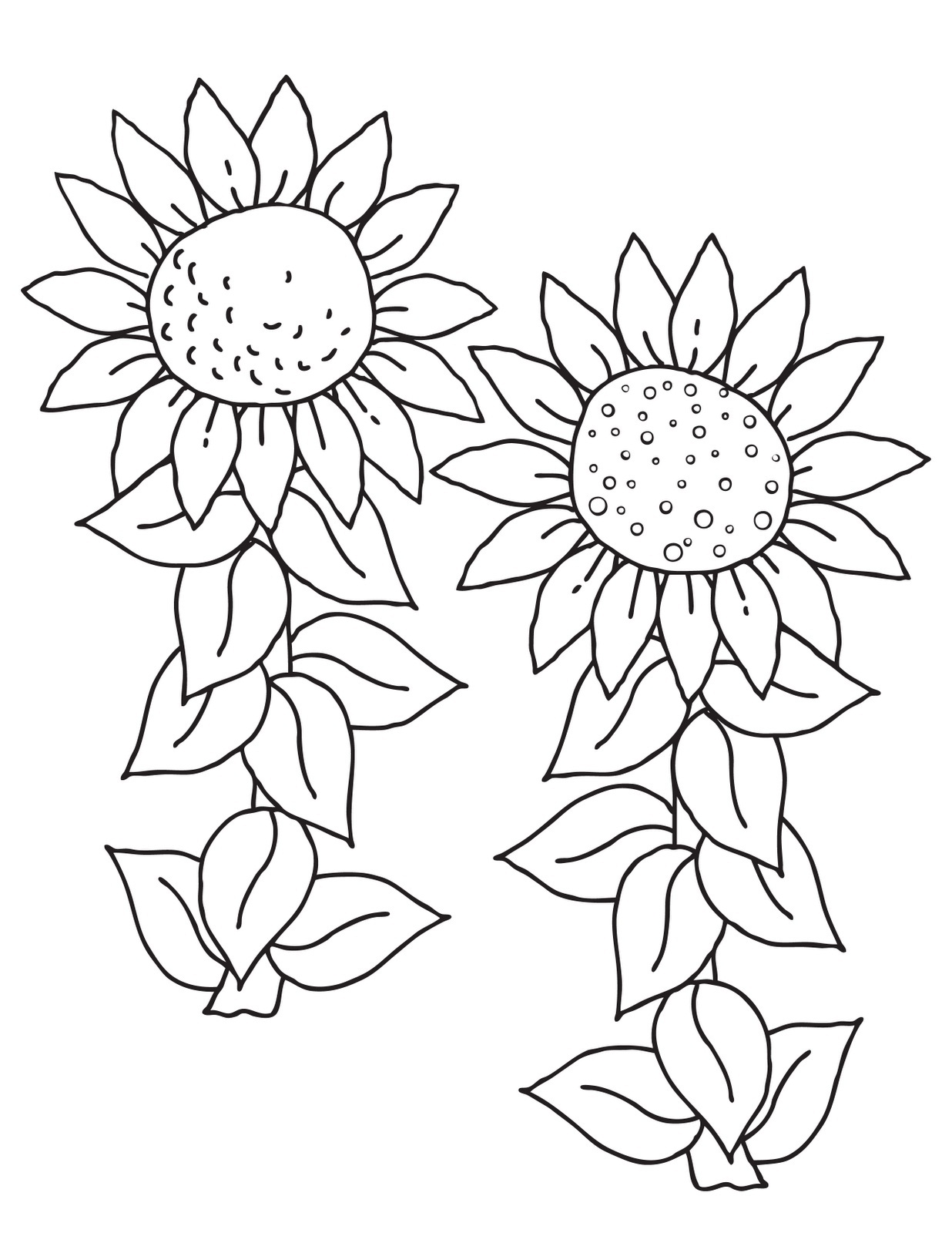 Free Plant Coloring, Download Free Clip Art, Free Clip Art on ...   1600x1236