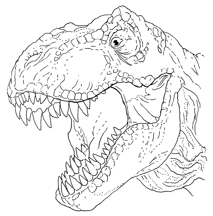 T Rex Coloring Pages Coloring Rocks