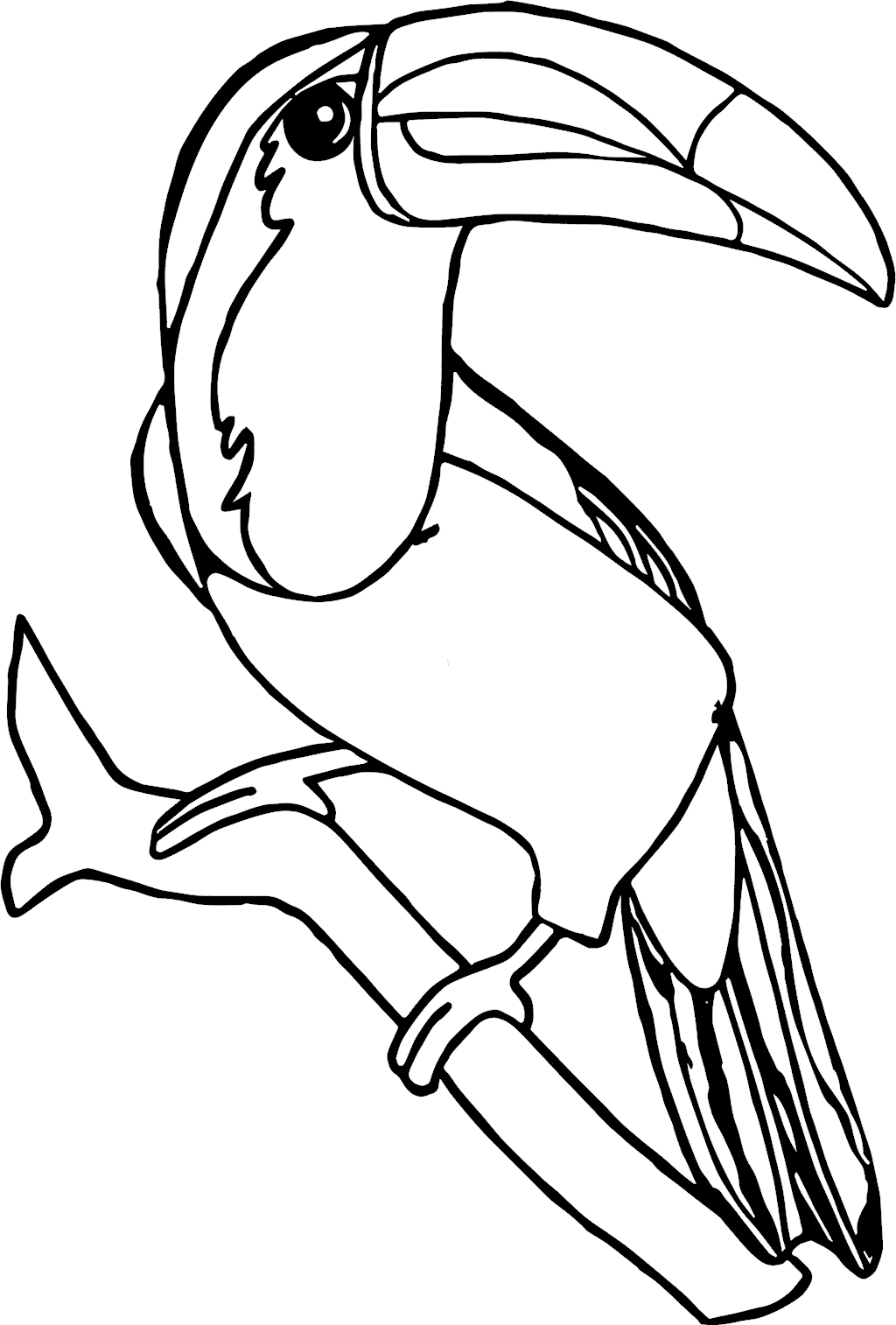 Toucan | Free Printable Templates & Coloring Pages | FirstPalette.com | 1514x1024