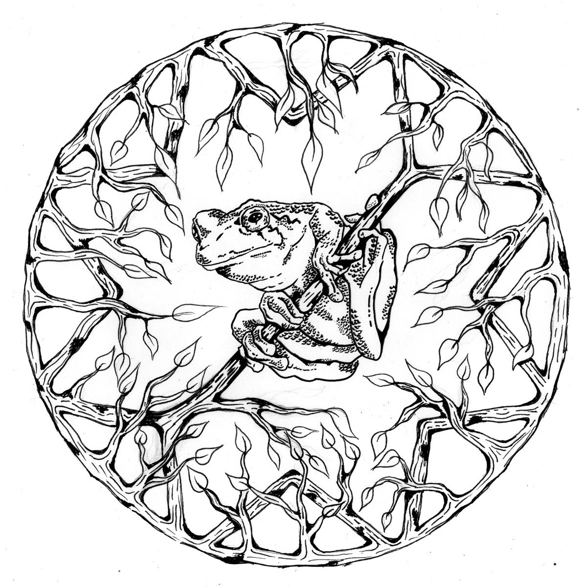 Tree Frog Mandala Coloring Page