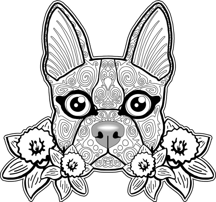 Zen Dog Coloring Page for Adults