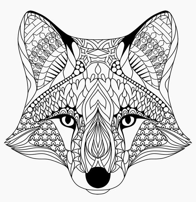 Fox Coloring Pages Rocks